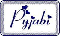 logo pyjabi