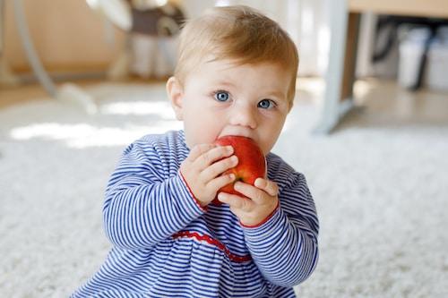 sucre alimentation bébé